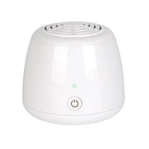 Mini purificador de aire, ZITFRI ionizador ozonizador de aire casero generador de ozono elimina olores bacterias humos impurezas para refrigerador armario coche cocina... opera con baterías o USB