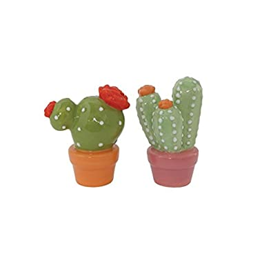 Creative Co-op Ceramic Cacti Salt and Pepper Shakers, Multicolor
