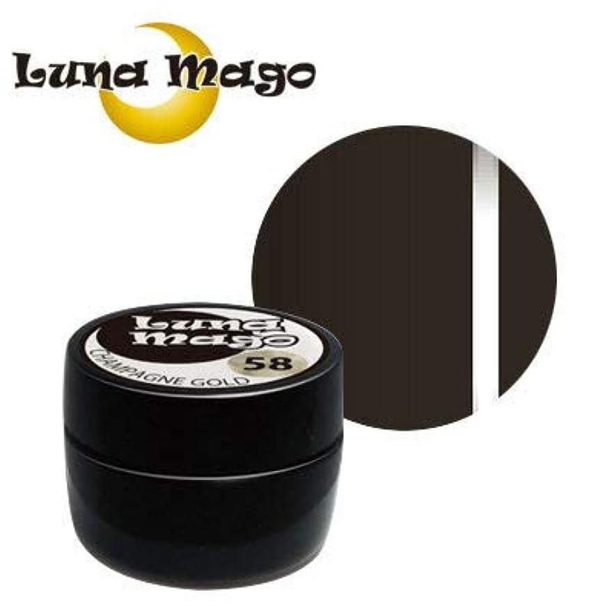 請求書篭エンジンLuna Mago カラージェル 5g 051 チョコ