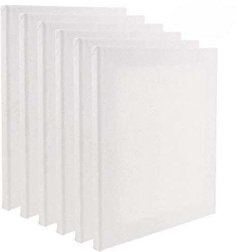 Tebery Set da 6 tele per pittura/ Tele d'artista intelaiate/ 40 x 30cm / tele prestirate 100% Cotone / Vuote/ Prive di acidi / Grana media