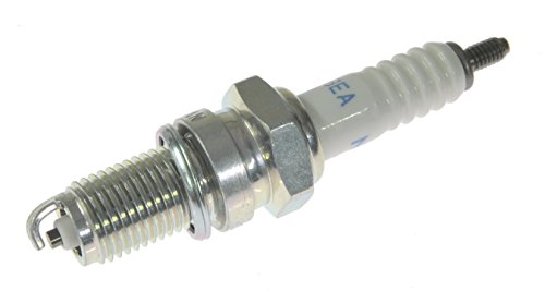 Quicksilver 827858Q NGK DPR6EA-9 Standard Spark Plug, 1-Pack