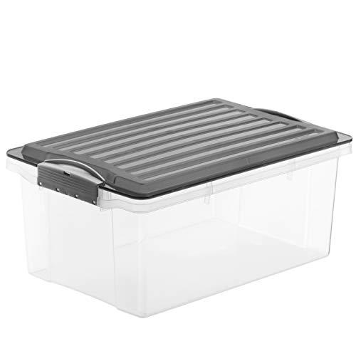 Rotho 1767705094 - Caja de almacenaje compacta con Tapa, de plástico, plástico, Transparente y Gris, A4 / 13 l