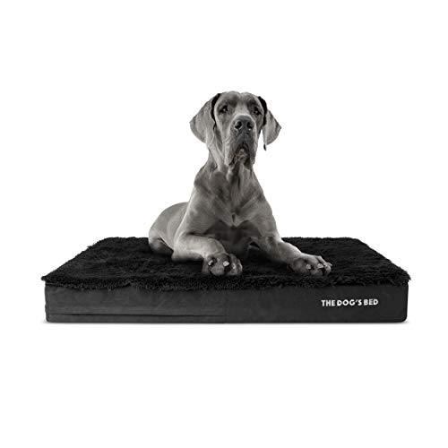 The Dog's Bed Orthopedic Dog Bed XXL...