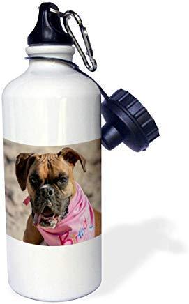GFGKKGJFD612 Roni Chastain Fotografie – Boxergesicht, weiße Aluminium-Sport-Trinkflasche