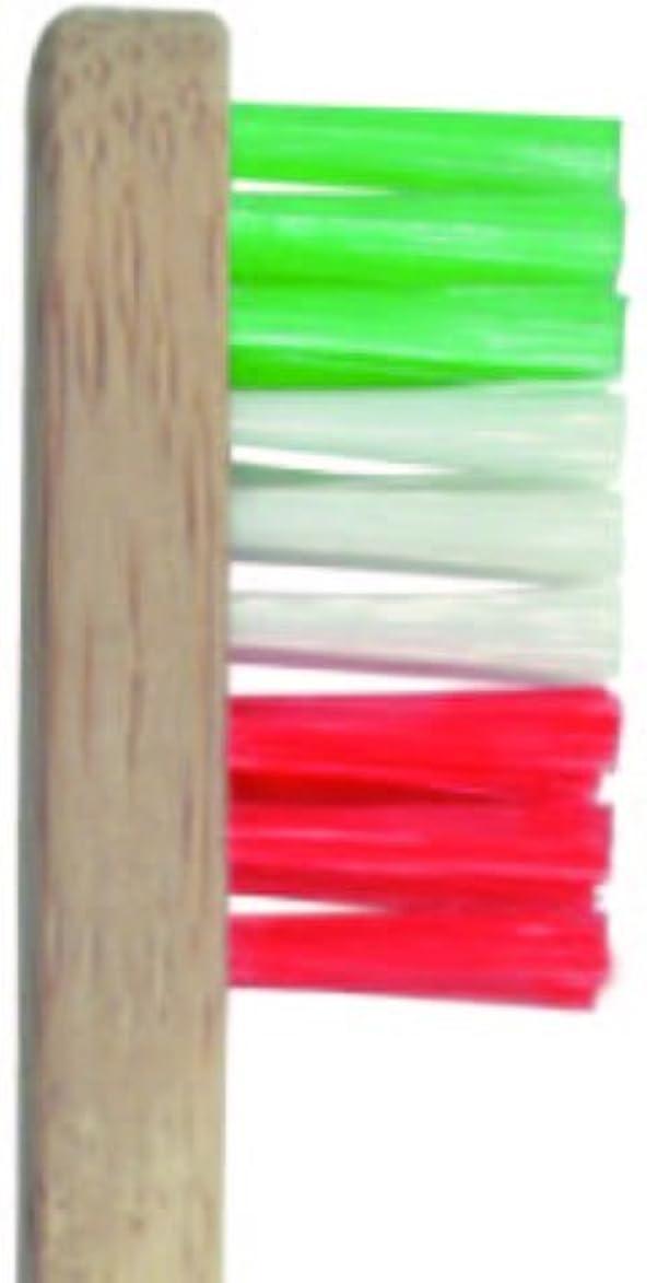 追い出す膨らみキャラバンPlentz プレンツ 竹ハブラシ (グリーン)
