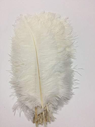 cenfry 100Strauß Federn 30,5–35,6cm Federn für Hochzeit Aufsteller Home Dekoration weiß