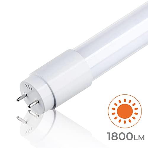 LED ATOMANT XU-8S74-K44X
