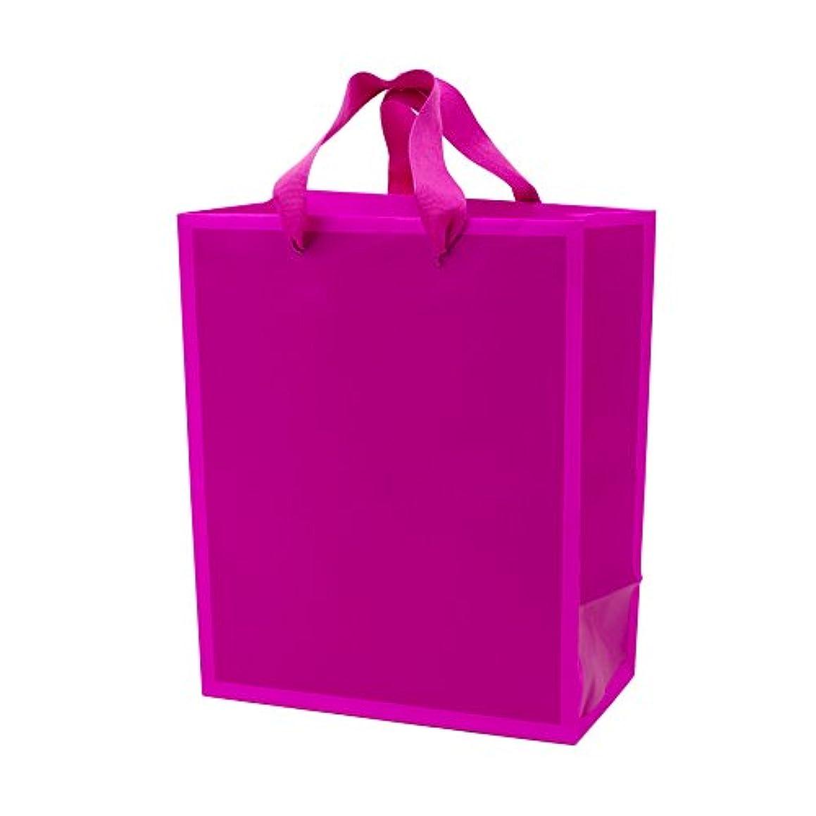 Hallmark Medium Gift Bag (Hot Pink)