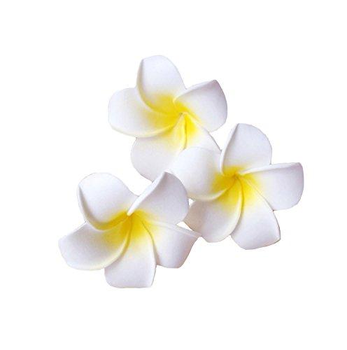 Eco Ride World ヘアアクセサリー 3個セット ヘア クリップ ピン プルメリア ハワイ 花 ヘアピン 髪飾り 白...