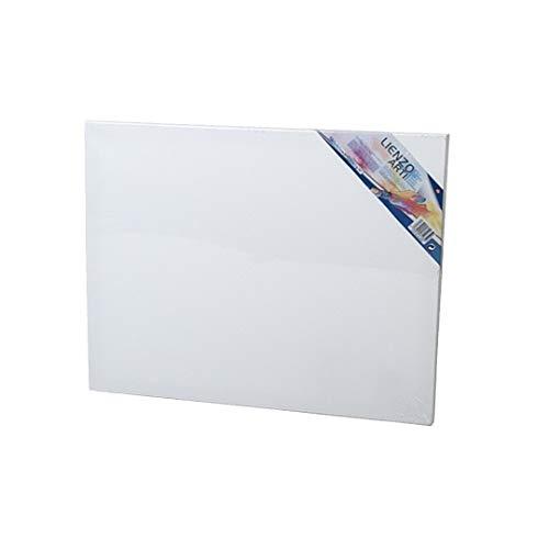 EUROXANTY® Leinwand zum Malen | Leinwand | Holzrahmen | für alle Arten von Maltechniken | Stoff 380 g/m² | Leinwand Dicke 16 mm (40 x 60 cm)
