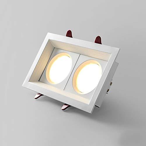 Sunny Lingt La plaza principal doble COB Spotlight, 10W / 20W empotrada en el techo Downlight, simple tienda de ropa Decoración ahorro de energía de la lámpara del punto, la oficina del pasillo del pa