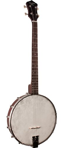 Recording King RKT-05 Dirty Thirties Tenor Banjo