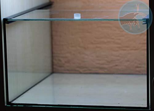 Salty Bee Kallax Aquarium Glasabdeckung - Schiebeabdeckung für Kallaxbecken, Glasschiebeabdeckung