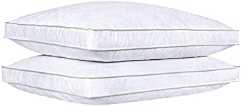 2-Set Puredown Goose Down Feather Bed Pillows