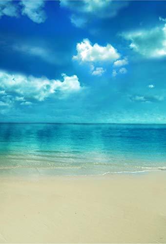 Fondali fotografici Paesaggio marino Sfondi di fotografia digitale Sfondo fotografico Vinile sullo sfondo Sfondo Decorazione Muro Muro di sfondo Banner con sfondo personalizzato Sfondo di f