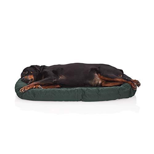 Pets&Partner® Indoor und Outdoor Matte für kleine bis große Hunde, Grün, L