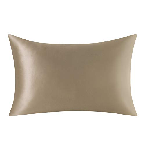 Ethlomoer 100% Natural Pure Silk Pillowcase for Hair and Skin, Both Side 19mm, Hypoallergenic, 600 Thread Count, Luxury Smooth Pillowcase with Hidden Zipper 1pc, 50 x 75 cm, Taupe