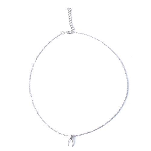 INSEET Elegent Anhänger Halskette Charms Halsketten Geburtstagsgeschenke für Frauen Mädchen, Wunschknochensilber + Wunschstück