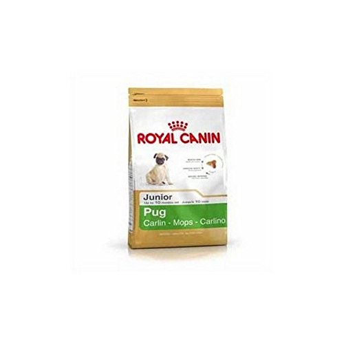 Royal Canin Mops Junior (1.5Kg) (Packung mit 2)