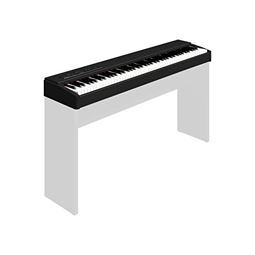 Roland F-20-CB Digital Piano