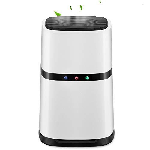 Luftreiniger, echter HEPA-Filter, negative Ionen, 3-Stufen-Filtersystem, Filterwechsel-Erinnerung, für Schlafzimmerrauch, Pollen, Staub, Allergien und Tierhaare, Entferner