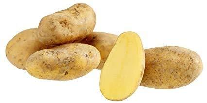 Pflanzkartoffel   Kg   verschiedene Sorten   Saatkartoffel mittelfrüh und festkochend  (mittel früh, Laura 10 Stück)