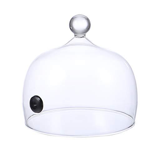 Cabilock - Campana para ahumar con infusor de humo, 17 cm