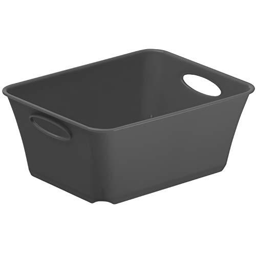 Rotho Living kleine Aufbewahrungsbox/Dekobox 0,5l, Kunststoff (PP) BPA-frei, anthrazit, C7/0,5l (14,6 x 11,4 x 6,0 cm)