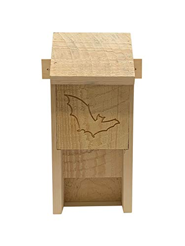 Fledermaus Box