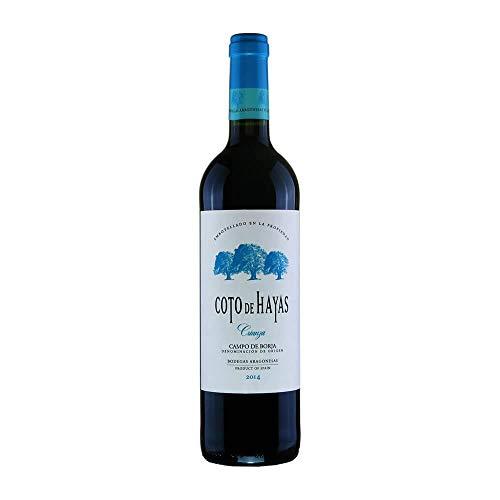 Coto De Hayas - Vino tinto crianza d.o. campo de borja botella 75 cl