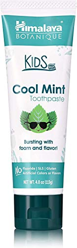 Himalaya Herbal Pasta de dientes para niños - Cool Mint 113g 113 g