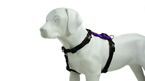 Blue-9 Pet Products Balance Harness Buckle Neck (Medium, Purple)