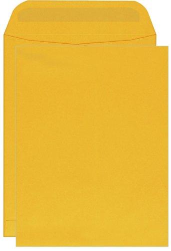 Columbian Catalog Envelopes, Self-Seal, 9 x 12 Inches, Brown Kraft, 250 Per Box (CO733)