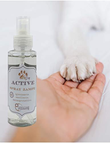 ACTIVE Pulizia Zampe del Cane, Igienizzante Antibatterico, Prodotto BIO, Emolliente Dermoprotettivo per Le Zampe dei Cani