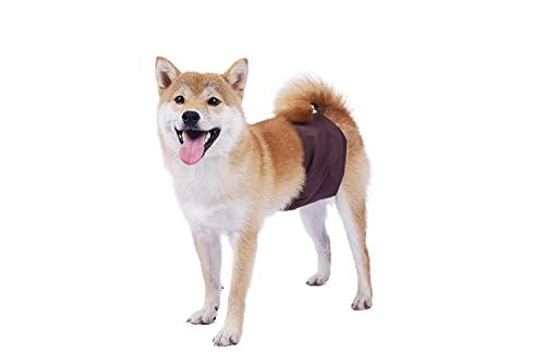 BePetMia Pañales Lavables para Perros machos, Ropa Interior higiénica para Cachorros, Perros en celo e incontinencia, 5 Tallas para Perros pequeños, medianos y Grandes (M: 42-50cm, Marrón)