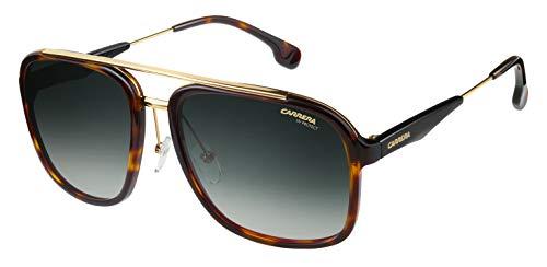 Carrera 133/S 9K 2IK Gafas de sol, Dorado (HAVANA GOLD/GREEN SHADED), 57 Unisex-Adulto