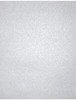 Best silver shimmer cardstock Reviews