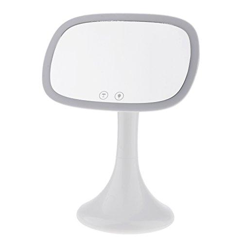 FLAMEER LED Kosmetikspiegel Schminkspiegel Tischspiegel Standspiegel mit 10x Vergrößerung und 180 Grad Verstellbar, Geschenk für Freunde und Familien