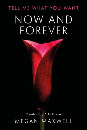 Now and Forever (Tell Me What You Want Book 2) (English Edition)