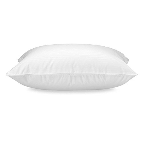 Claritin Ultimate Allergen Barrier Pillow Protector Cover – Defend Against Dust Mites, Pollen, Pet Dander and Other Household Allergens, Luxuriously Soft (Child Size, White)