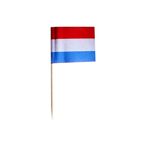 500 Flaggen Picker NIEDERLANDE Geburtstag TISCHDEKO