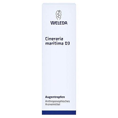 Cineraria Maritima D 3 Augentropfen, 10 ml