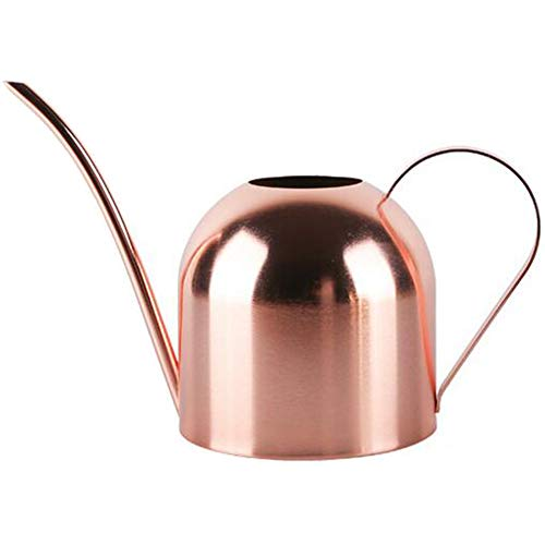 Enpato Small Watering Can Bonsai Stainless Steel Plant Water Can for Indoor Office Plants and Garden Brass Long Spout, 15oz/450ml…(Gold)