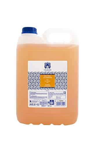 Valquer - Shampoo professionale a pH neutro. Shampoo Rivitalizzante con lucentezza e pro-vitamina B5 Hair Salon - 5000 ml
