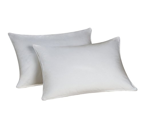 Down Dreams Classic Queen Pillow Set of 2