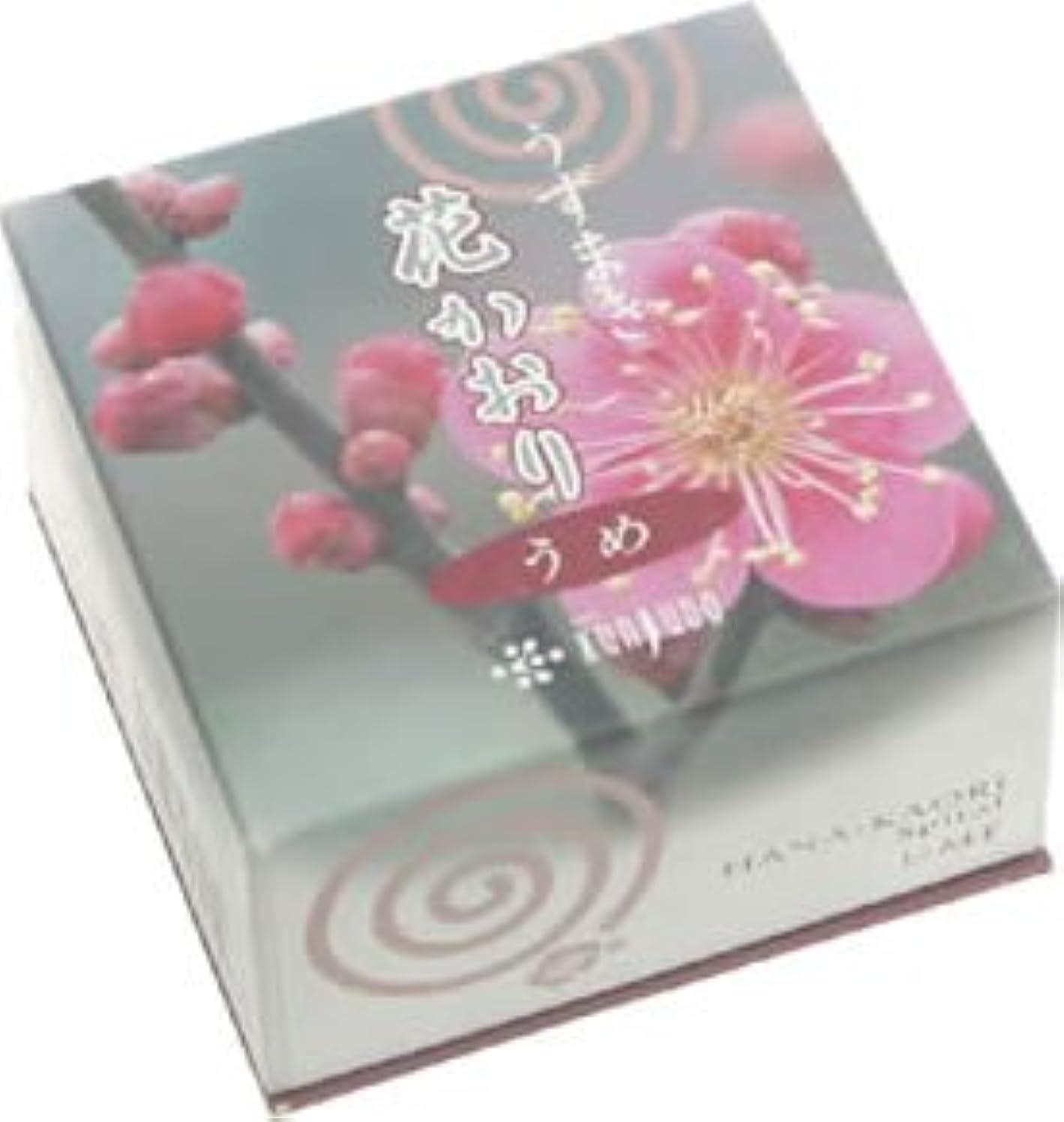 大惨事王女乏しい花かおり(うずまき)梅 #460