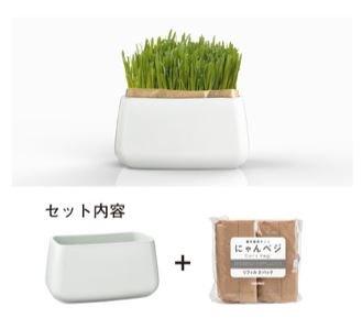 ハリオ 猫草栽培キット にゃんベジ