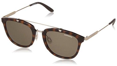 Carrera 127/S 70 SCT Gafas de sol, Dorado (Havana Gold/Brown), 51 Unisex-Adulto