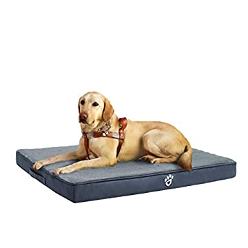 Hochdichtes Eierschalenschaum-Design: Die Eierschalenform spielt eine Massagerolle für maximalen Komfort und bietet Gelenkentlastung. Großes Hundebett für große Hunde / mittlere Hunde / Welpen bis zu 80 Pfund. (Bitte beachten Sie, dass es vakuumverpa...