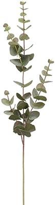 """32"""" Eucalyptus Silk Stem -Green/Gray (Pack of 12)"""